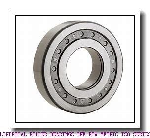 ISO NJ2220EMA CYLINDRICAL ROLLER BEARINGS ONE-ROW METRIC ISO SERIES