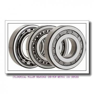 ISO NJ2222EMA CYLINDRICAL ROLLER BEARINGS ONE-ROW METRIC ISO SERIES