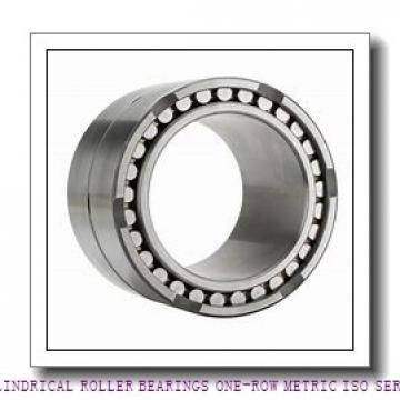 ISO NJ219EMA CYLINDRICAL ROLLER BEARINGS ONE-ROW METRIC ISO SERIES