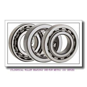 ISO NU2218EMA CYLINDRICAL ROLLER BEARINGS ONE-ROW METRIC ISO SERIES